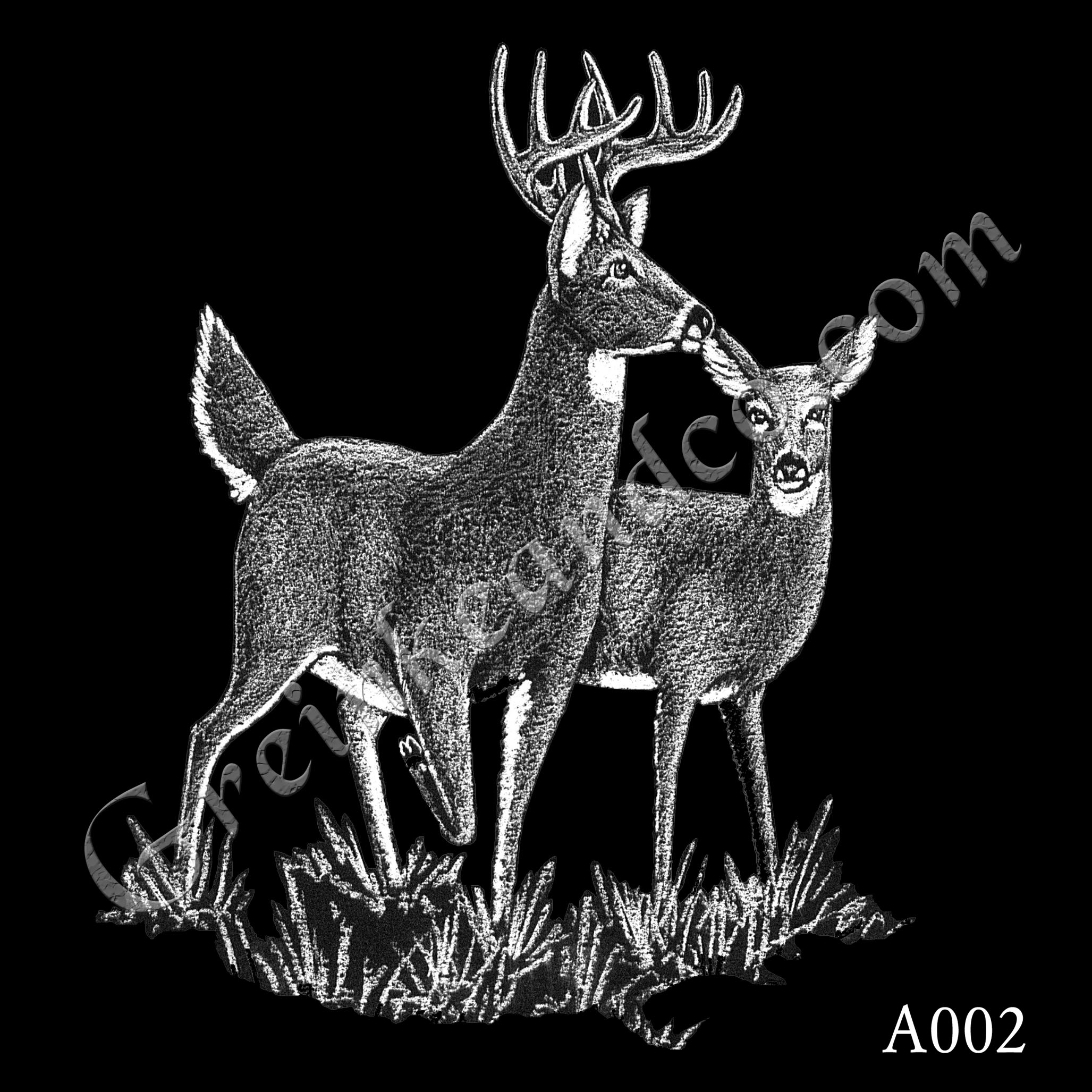 A002 - Buck and Doe