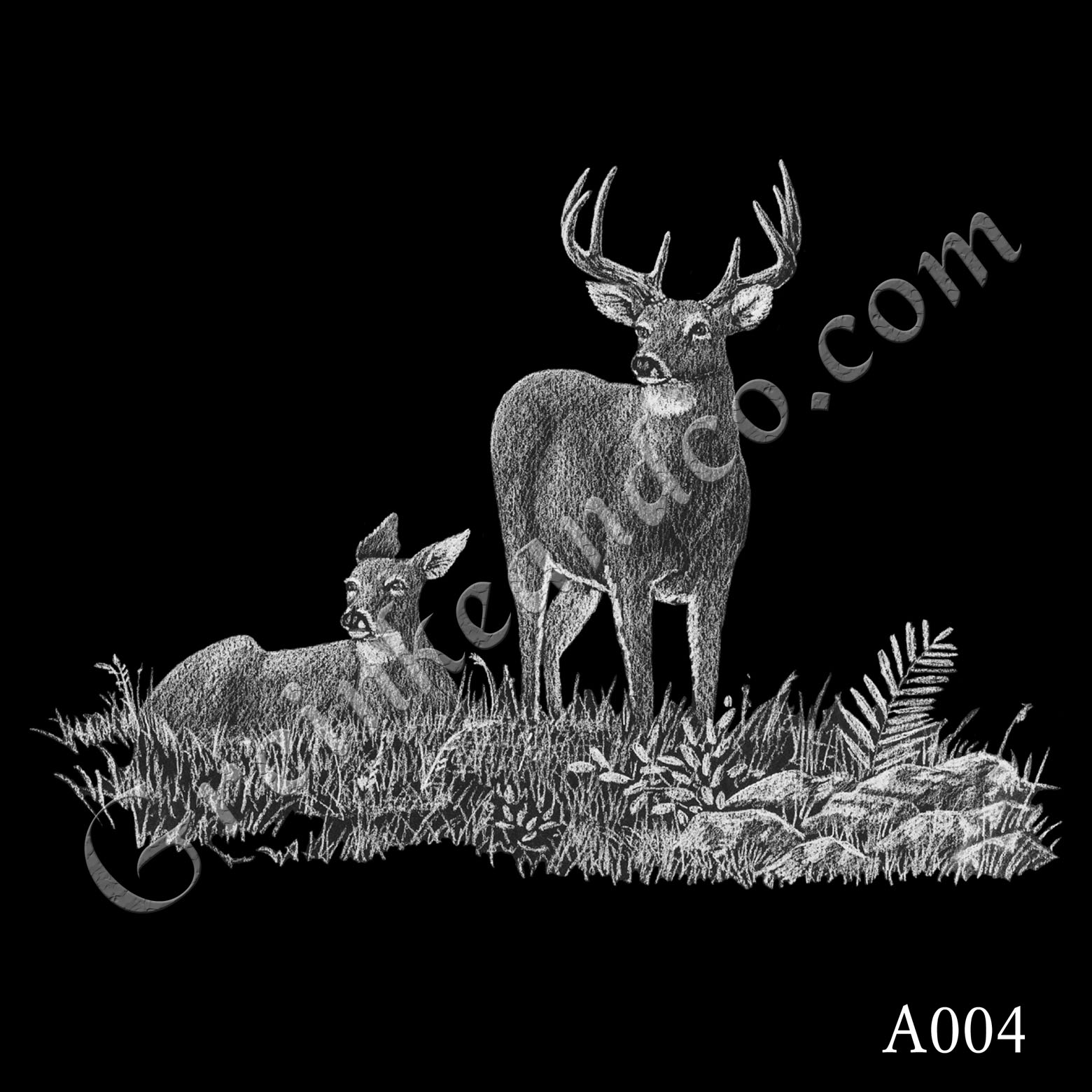 A004 - Two Deer