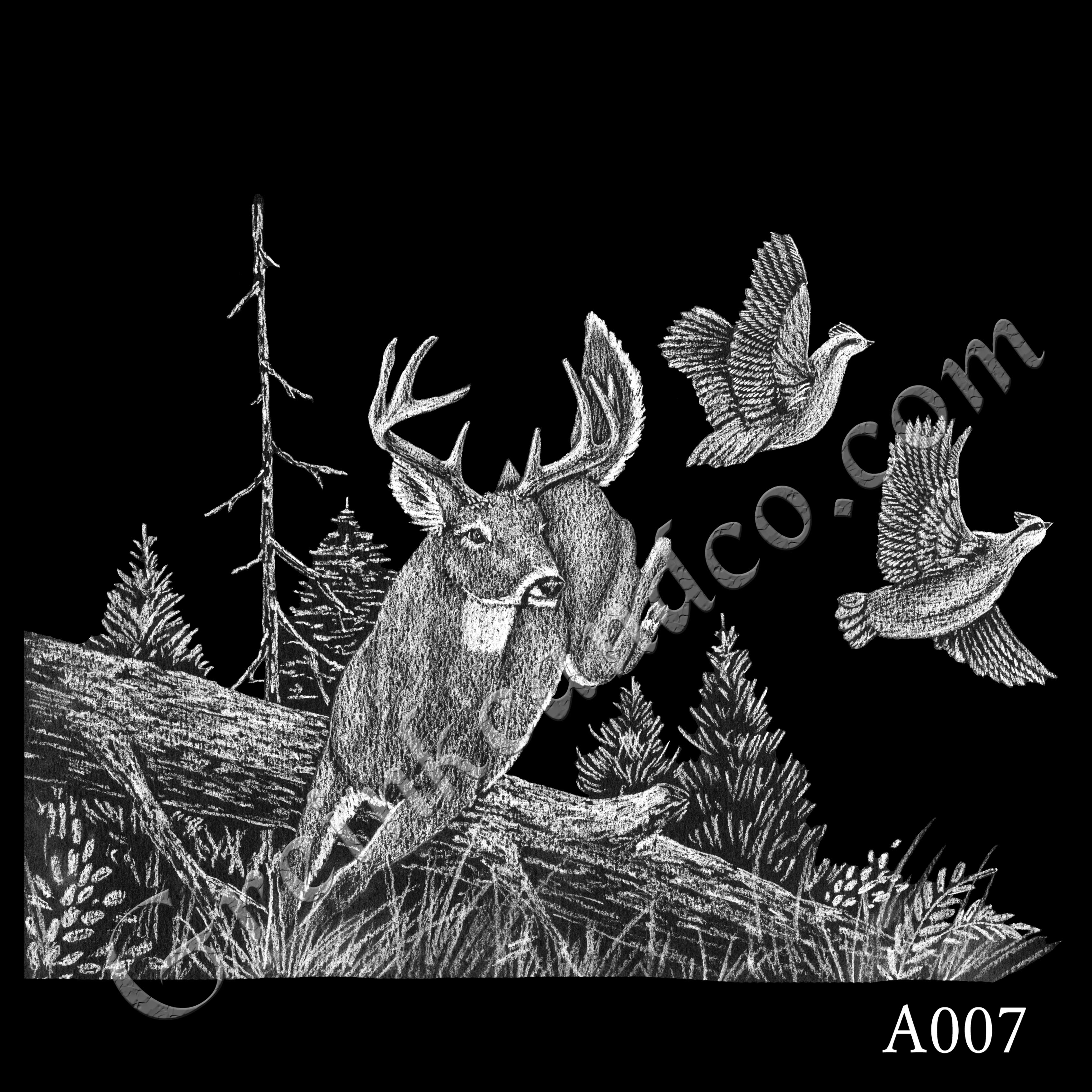 A007 - Jumping Buck and Birds