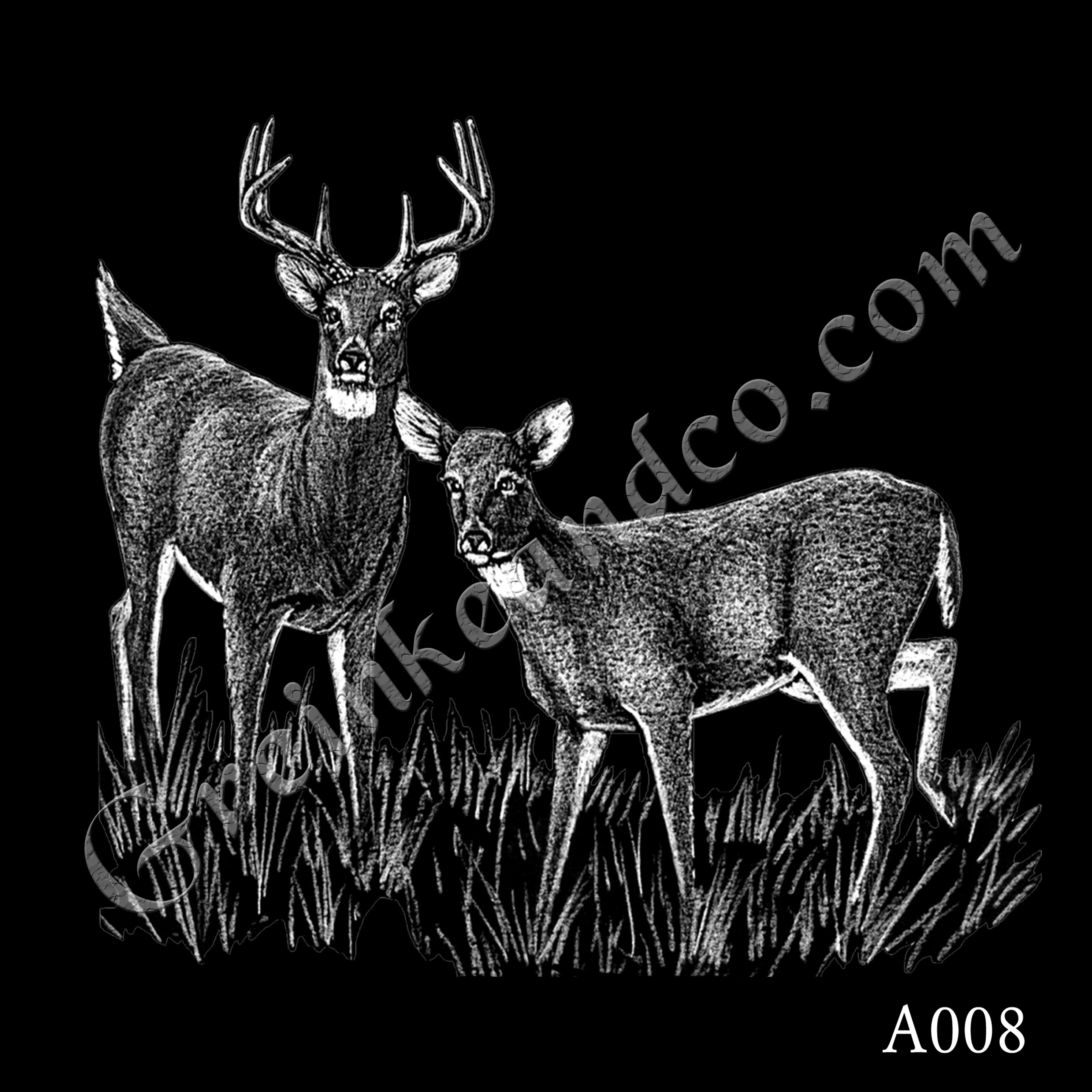A008 - Buck and Doe