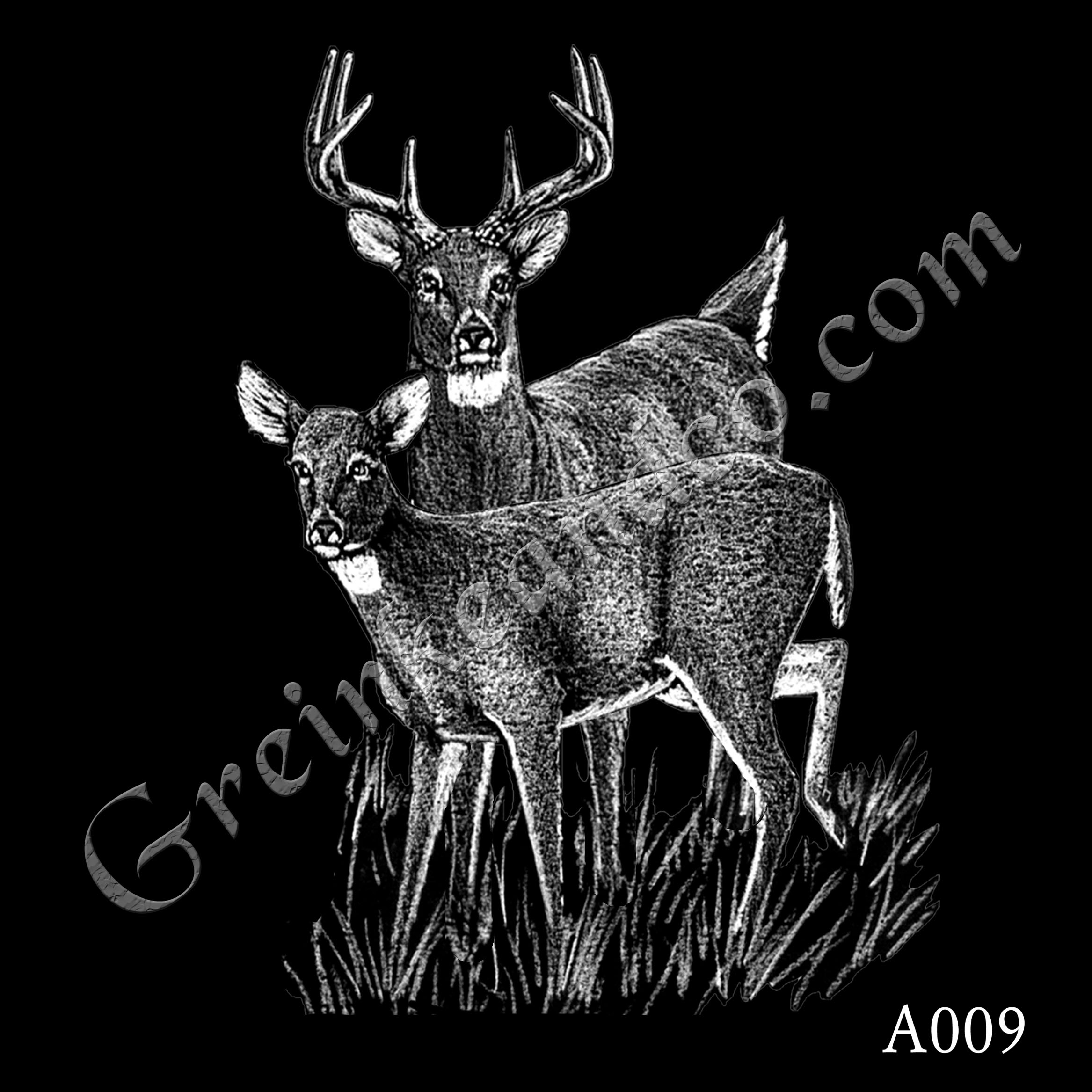 A009 - Buck and Doe