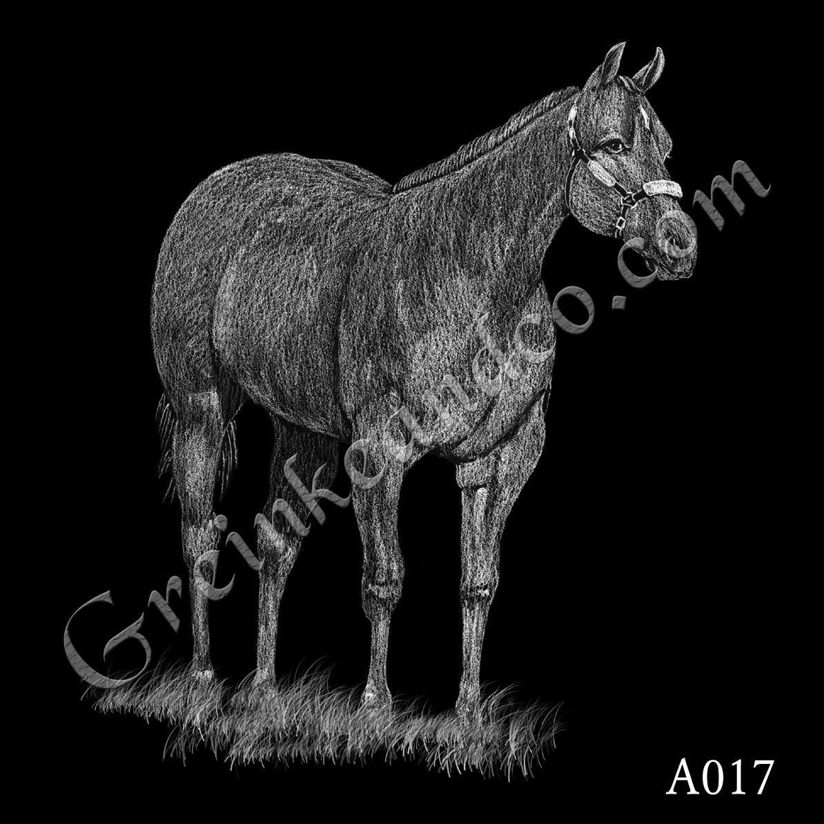 A017 - Standing Horse