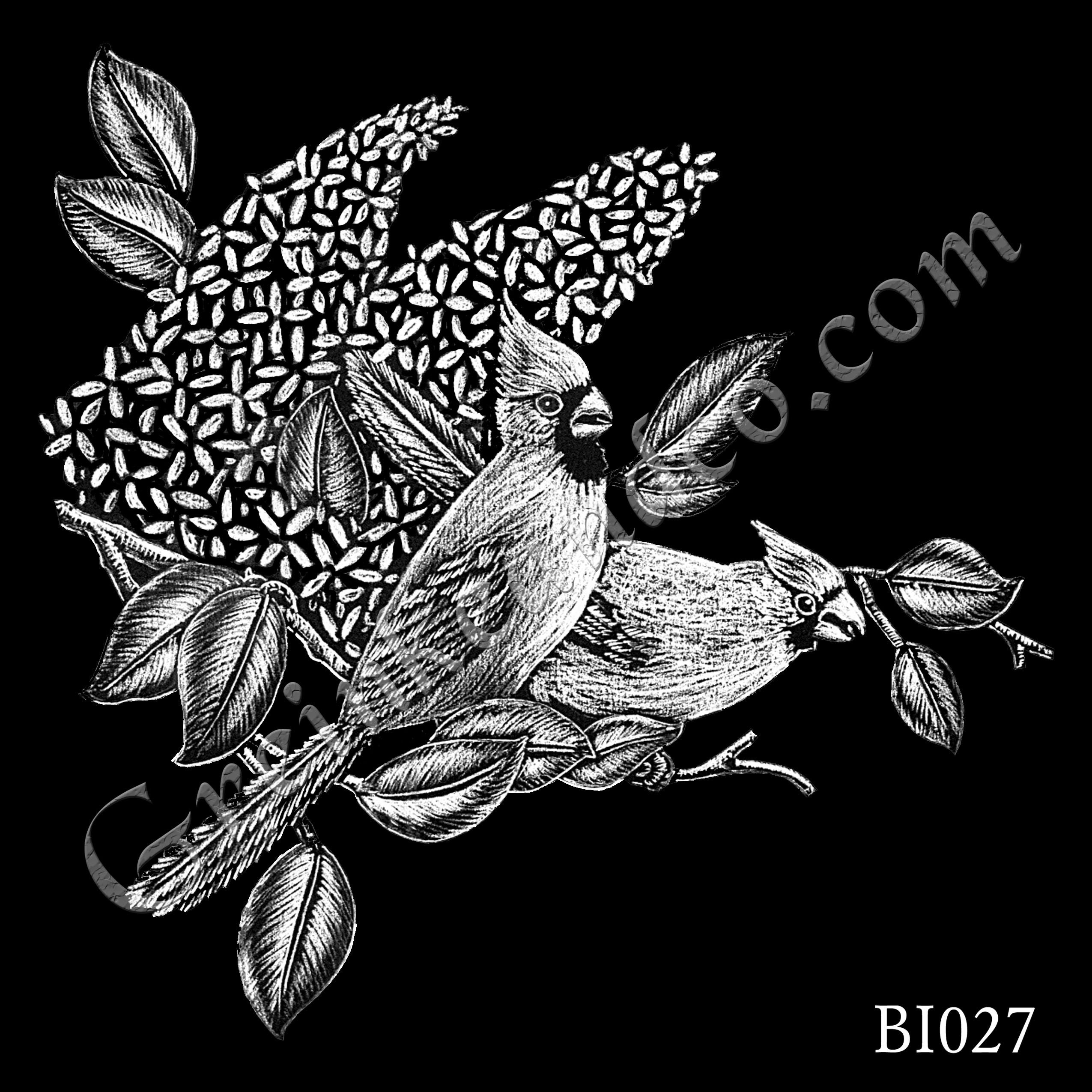 BI027 - Cardinals and Lilacs