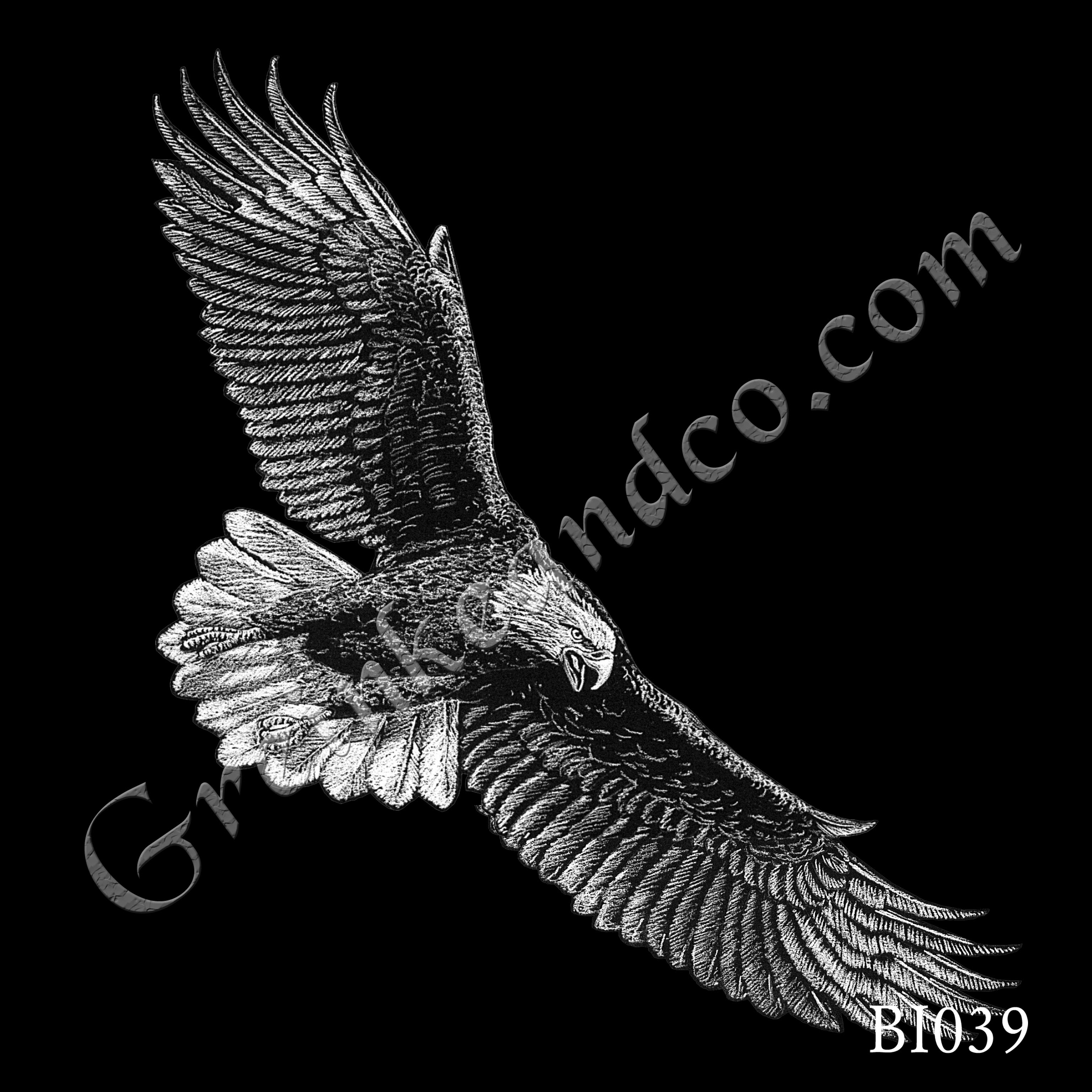 BI039 - Eagle Flying