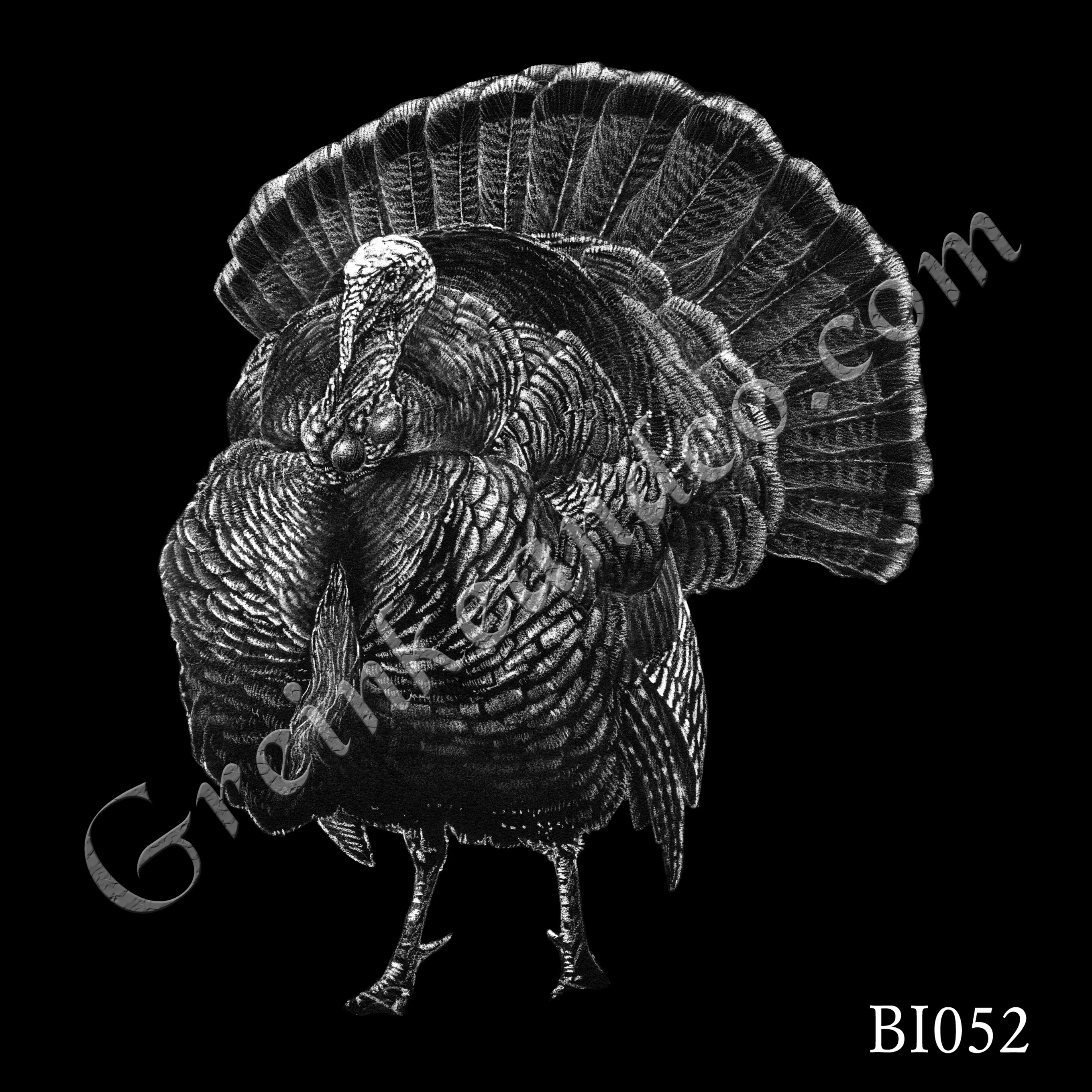 BI052 - Tom Turkey