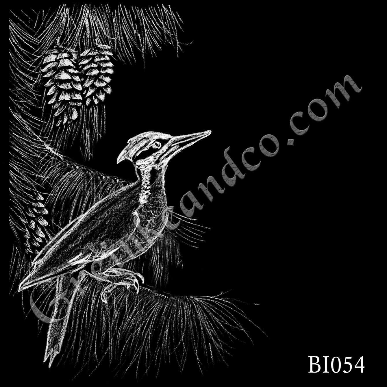 BI054 - Woodpecker Pine Branch