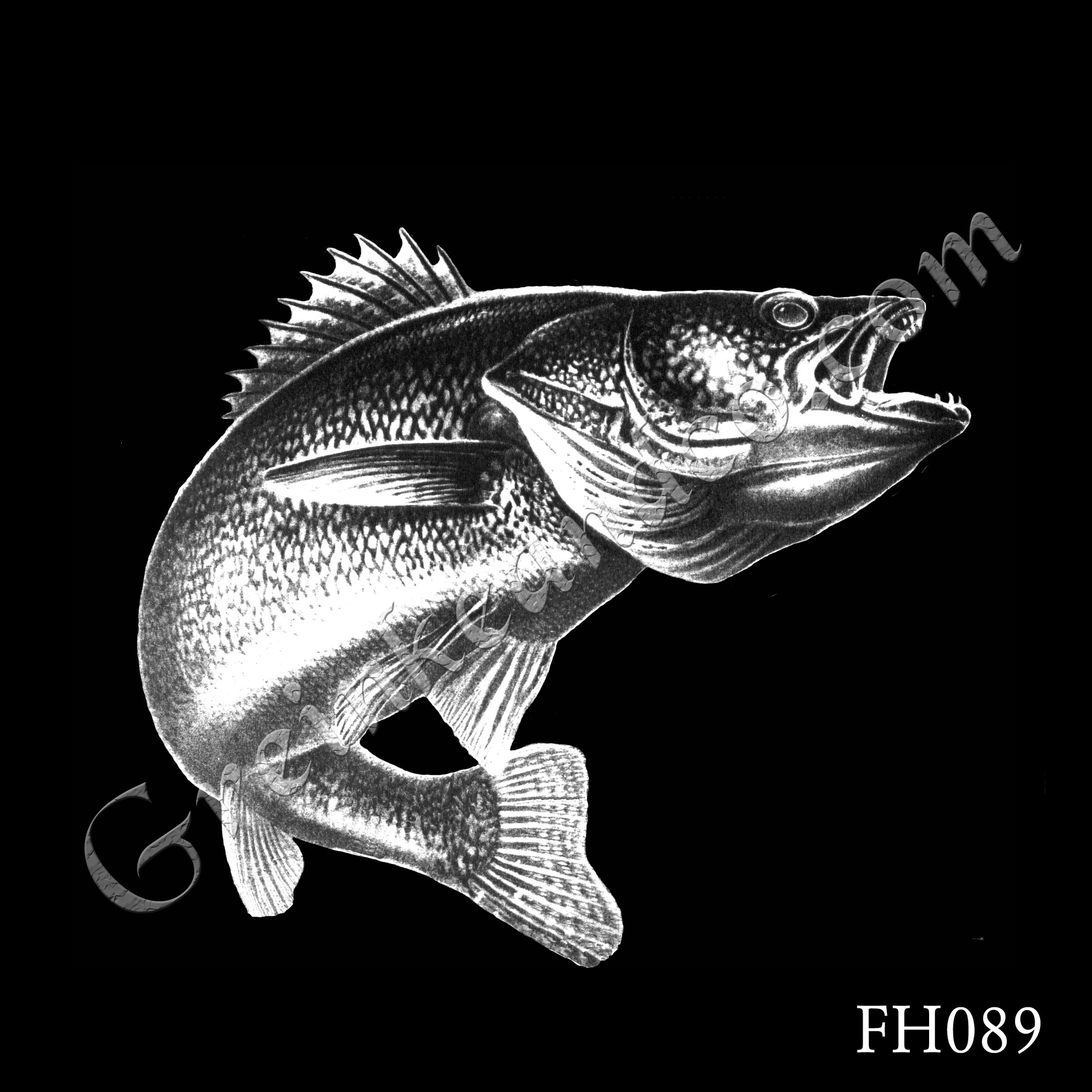 FH089 - Walleye