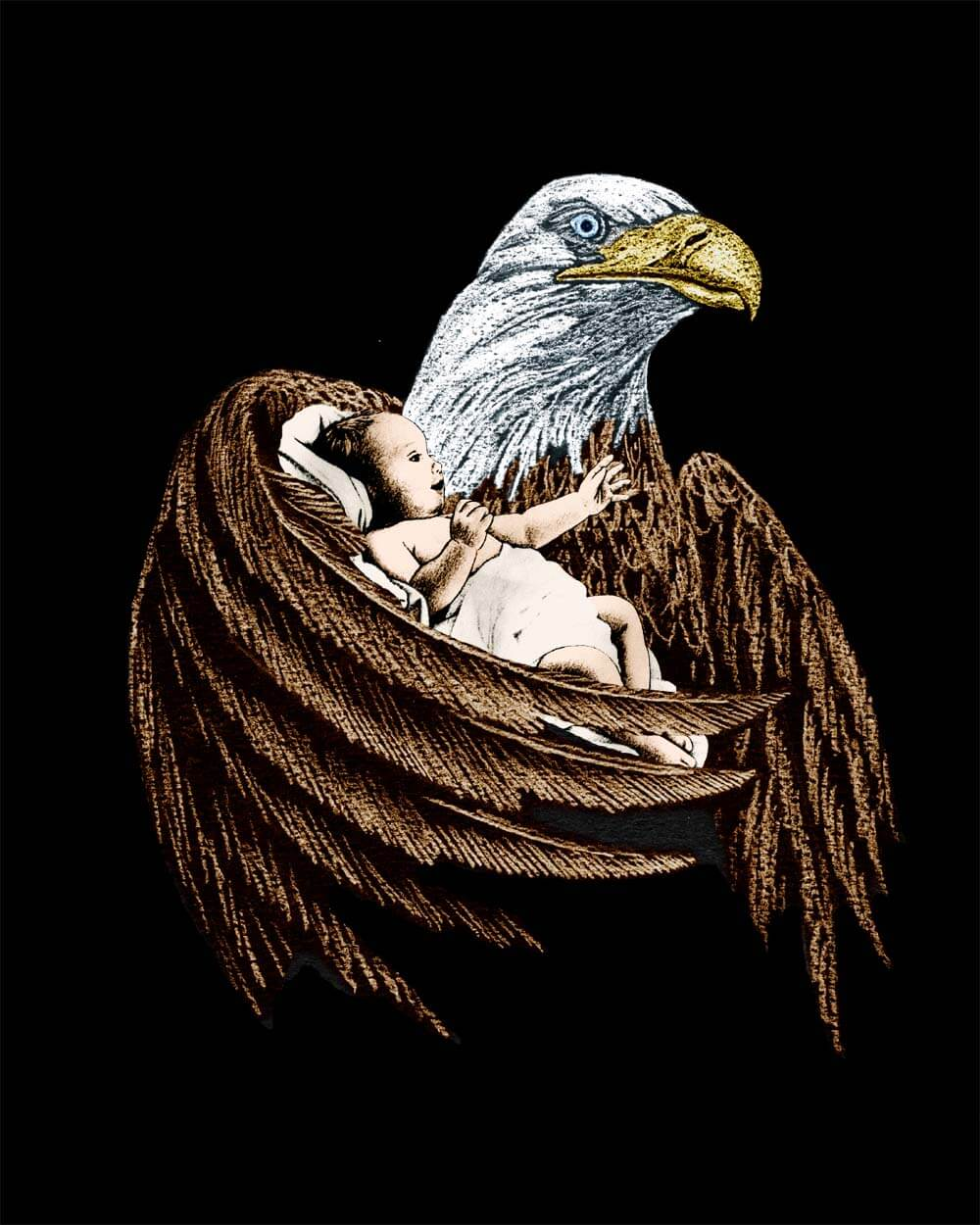 Eagle and Baby