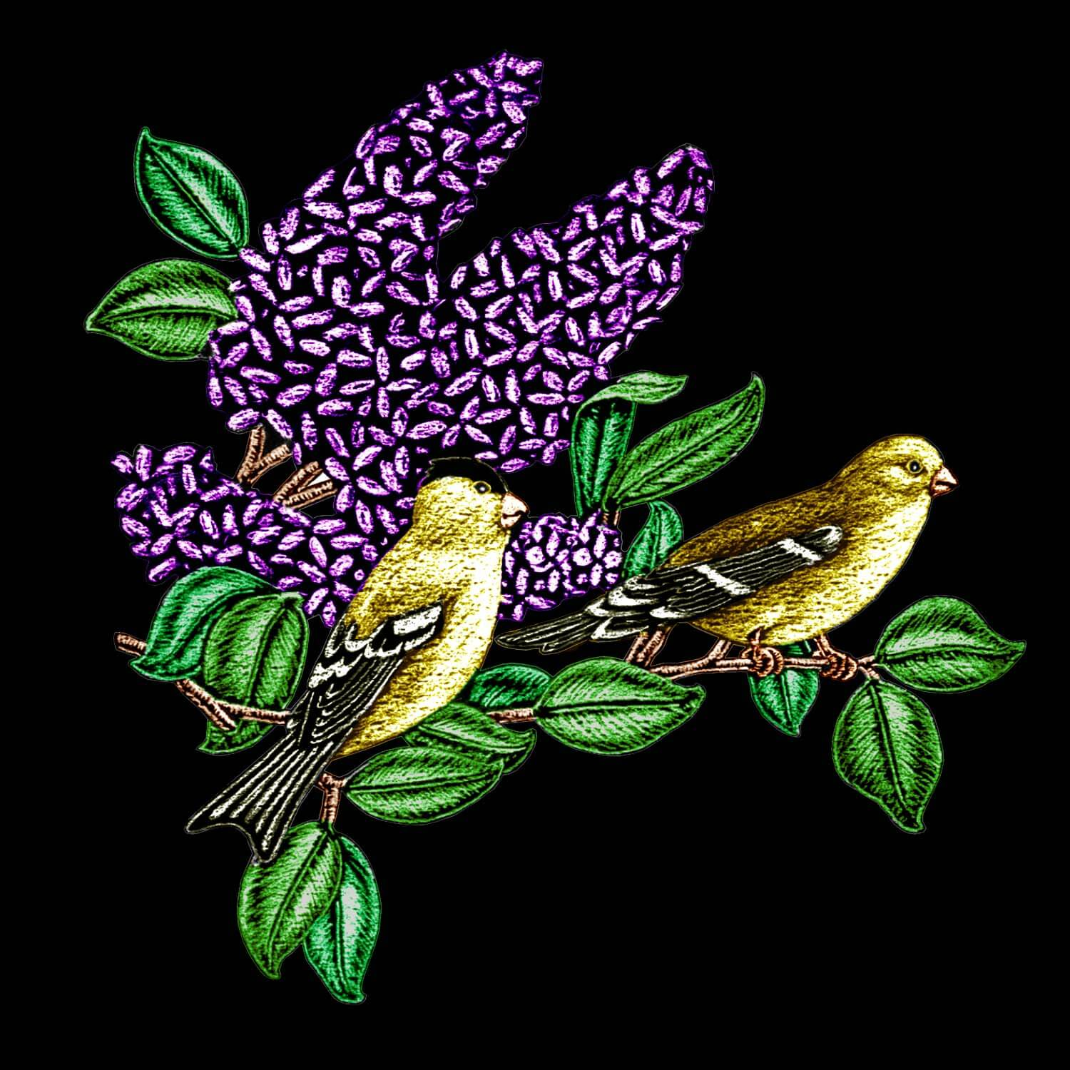 Goldfinches and Lilacs