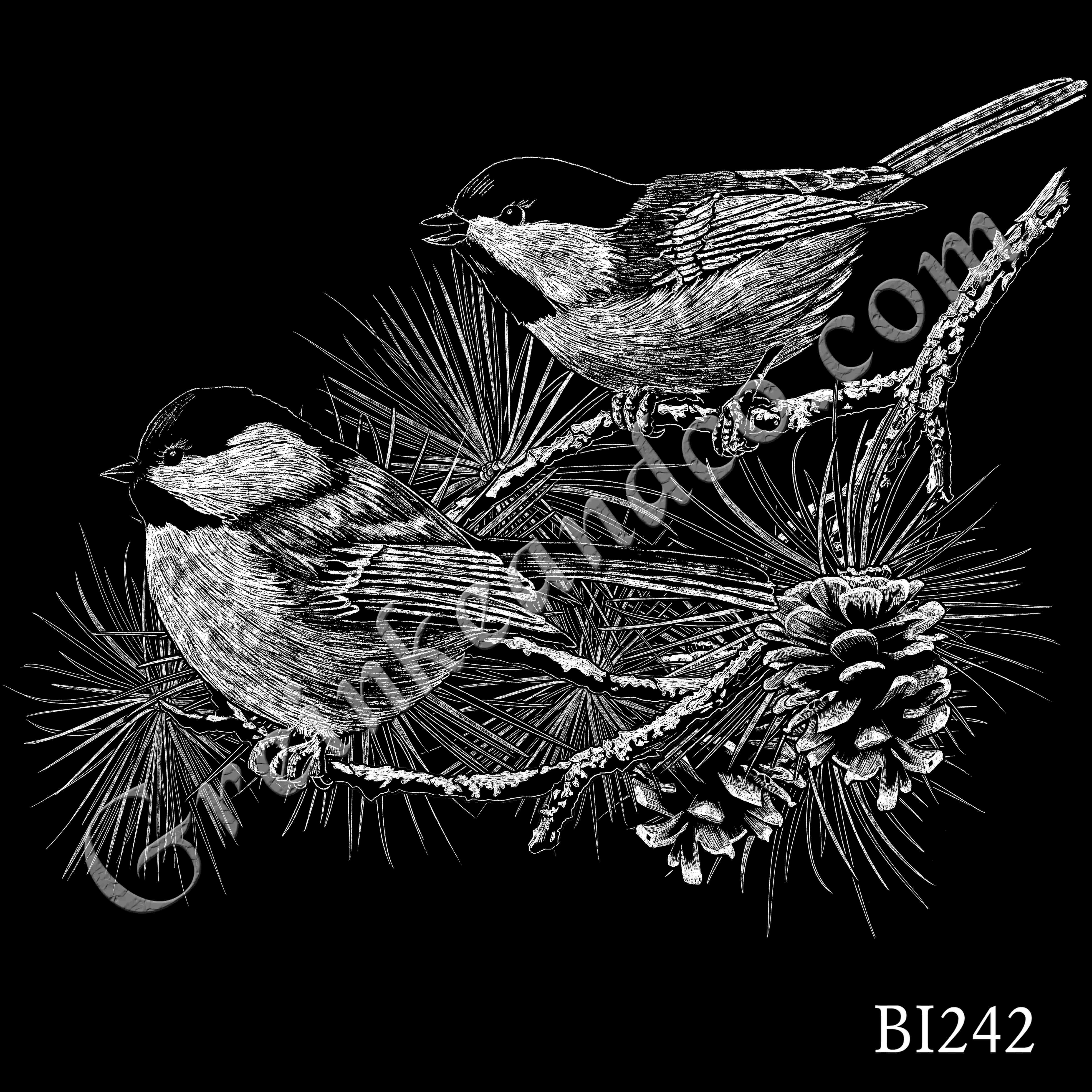 BI242 - Chickadees Branch