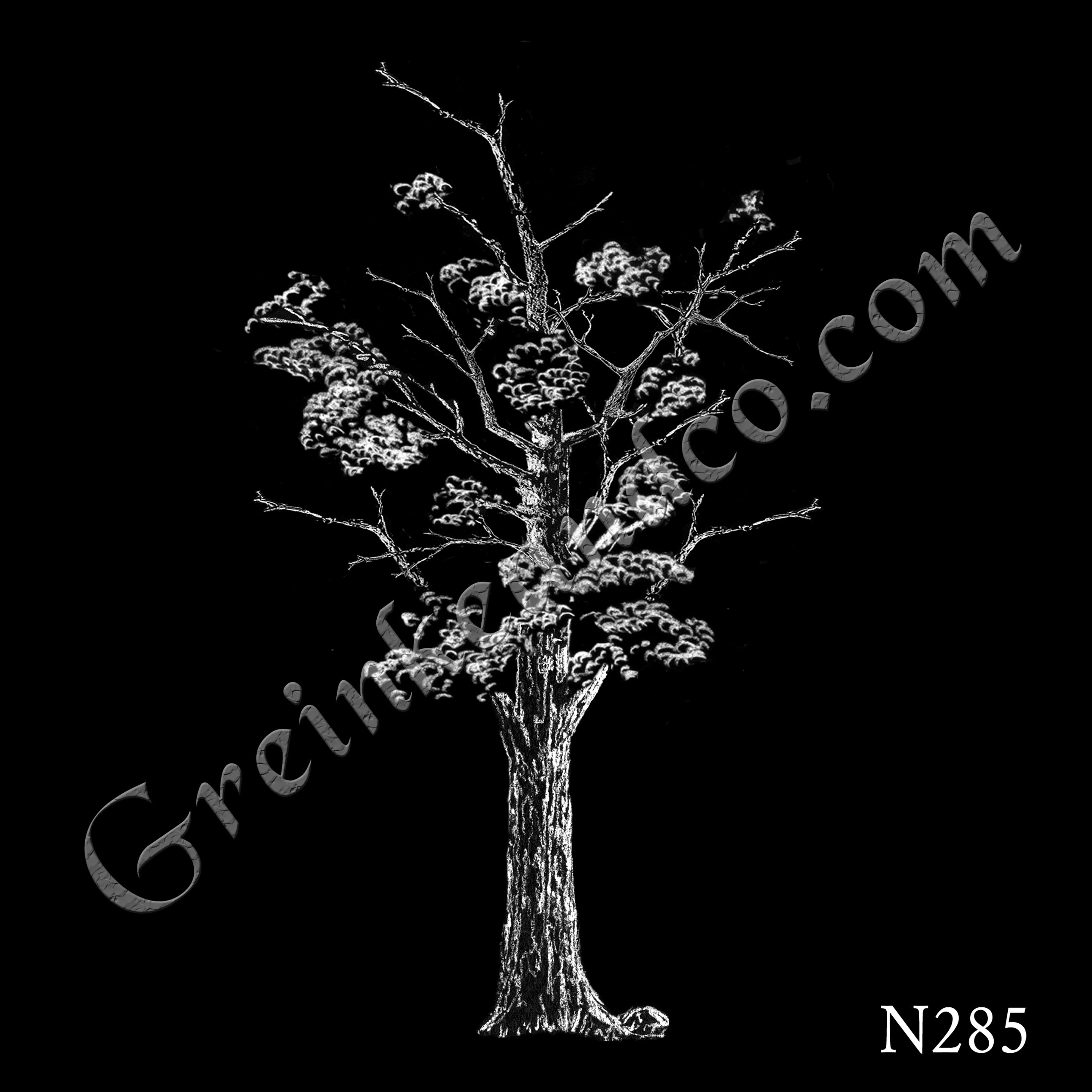 hickory winter tree drawing