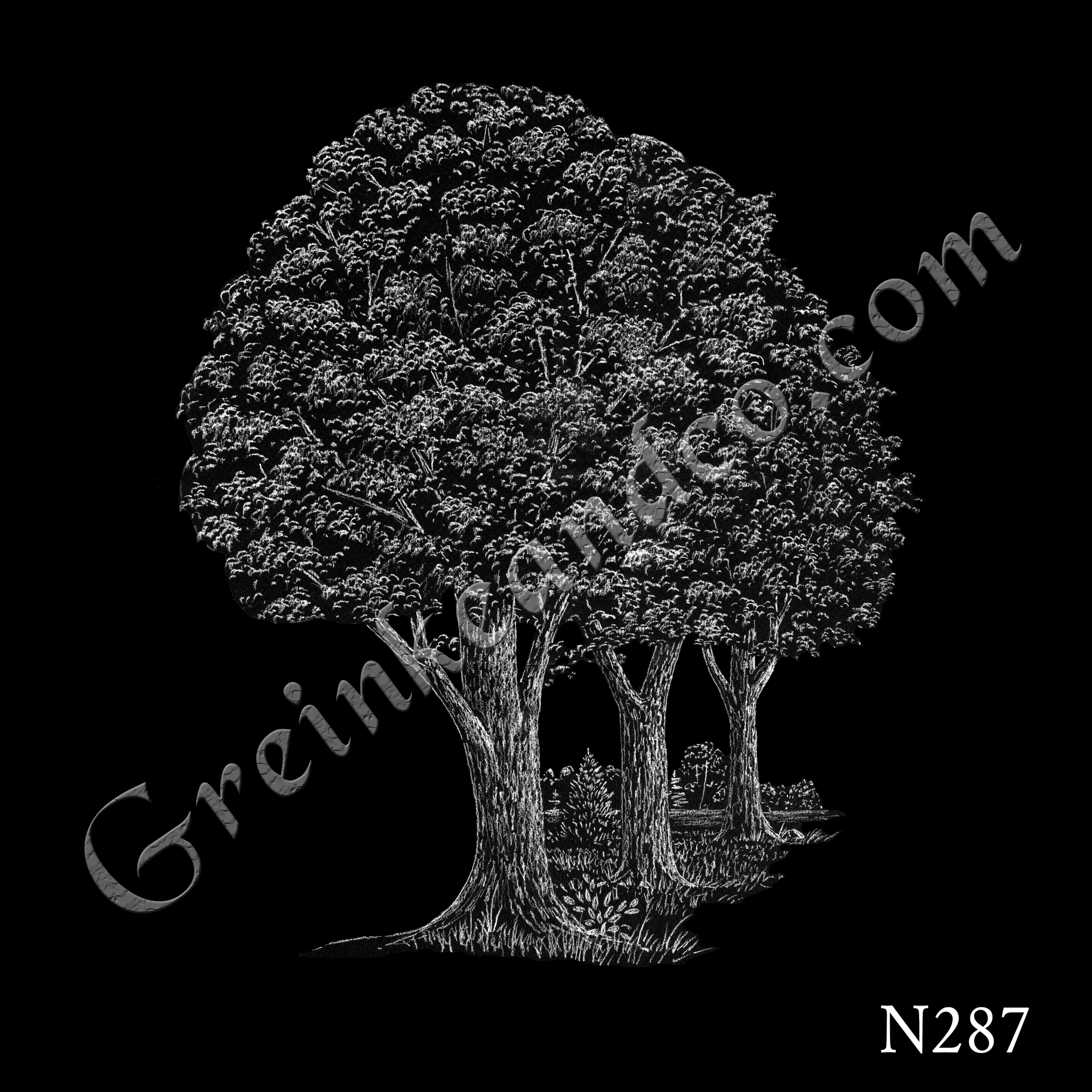 oak trees drawing