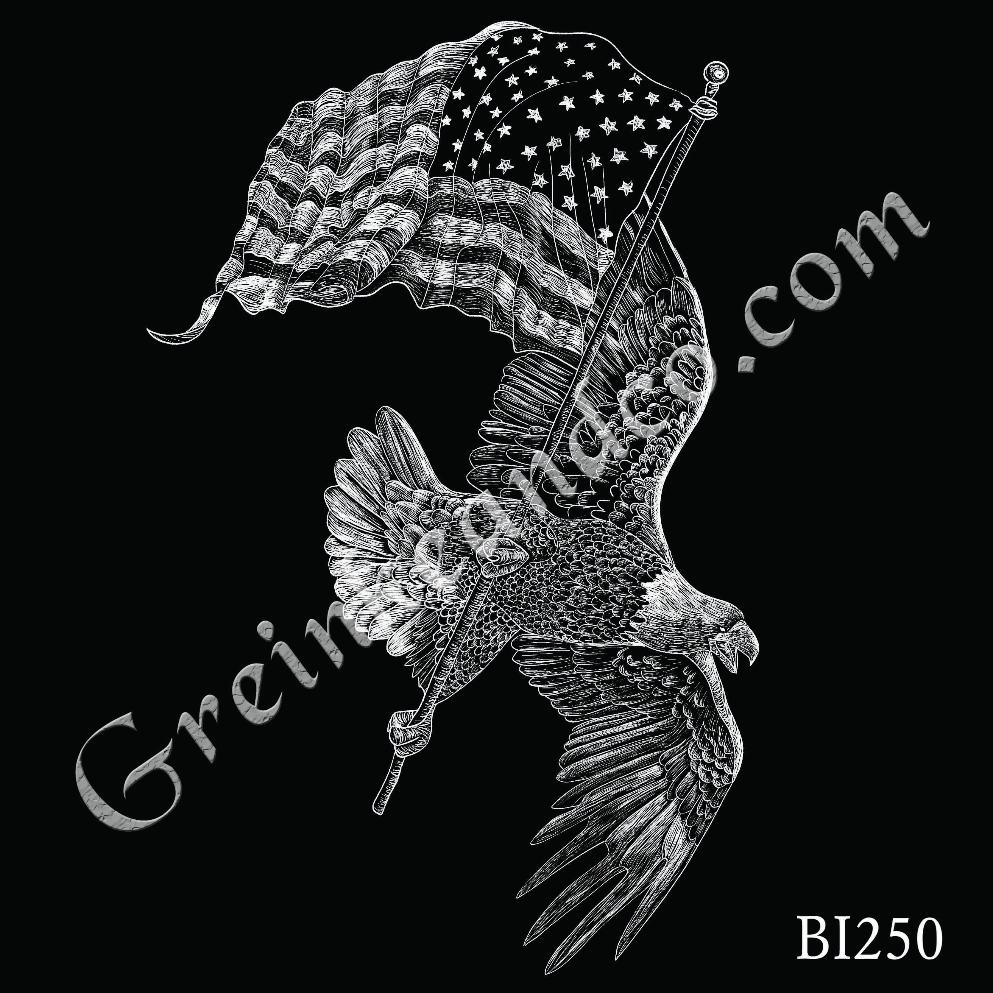 BI250 - Eagle and Flag