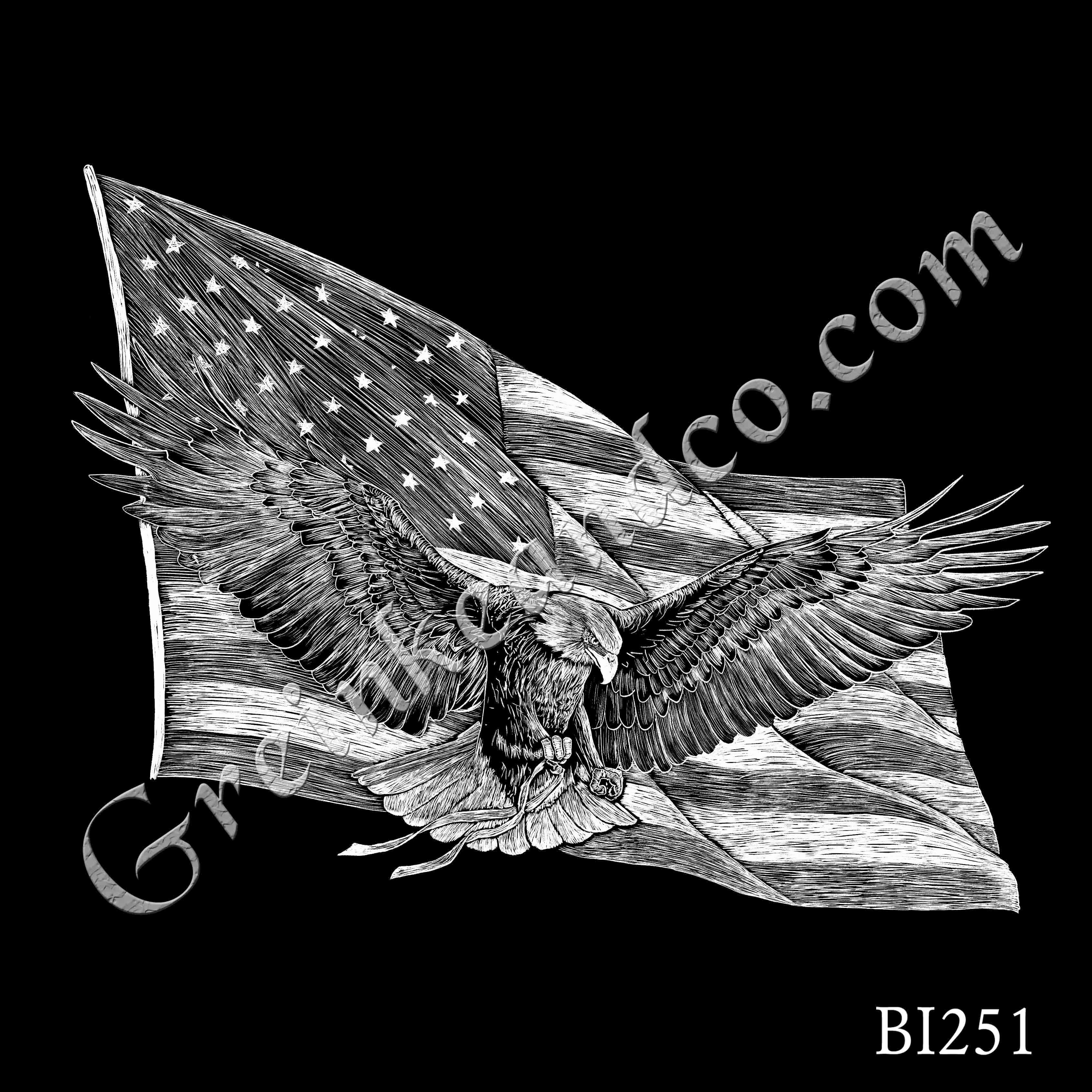 BI251 - Eagle and Flag v2